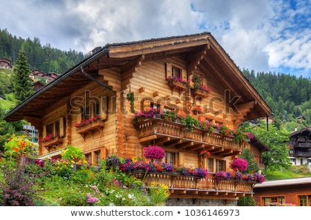 Typical houses in the Swiss alps Stock photo © michaklootwijk