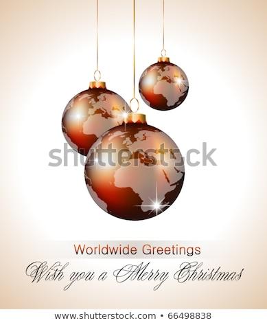 Zarif dünya top iş Stok fotoğraf © carodi