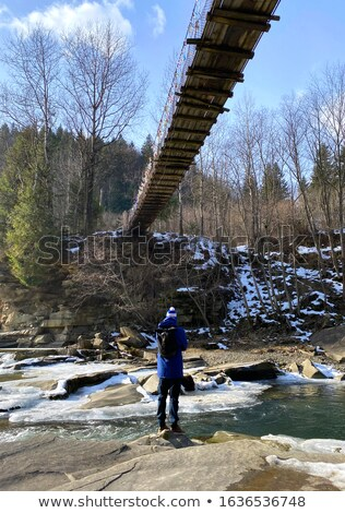 wooden suspension bridge in wood stock photo © paha_l