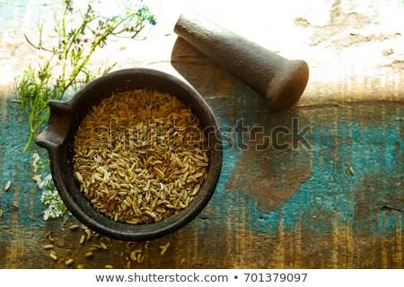 Organic Cumin seed (Cuminum cyminum) in mortar. Stock photo © ziprashantzi
