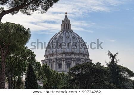 Pápa tömeg illusztráció templom sziluett béke Stock fotó © adrenalina