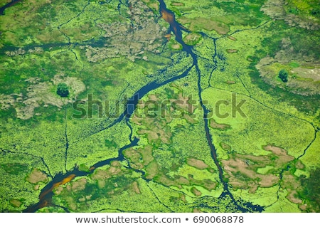 Africano rio delta pôr do sol homem barco Foto stock © kovacevic
