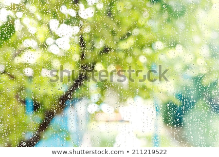 Raindrops on window pane Stock photo © stevanovicigor