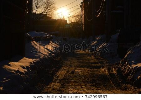 Stock foto: Weg · Nacht · Tageslicht · Bäume · orange · grünen