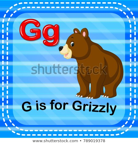 flashcard letter g is for grizzly bear stock photo © bluering