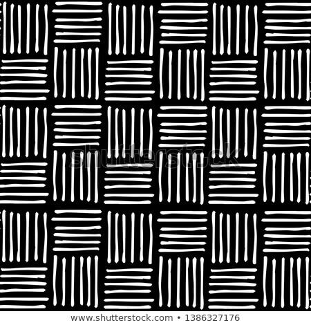 Vektor végtelenített kézzel rajzolt átló hálózat minta Stock fotó © CreatorsClub