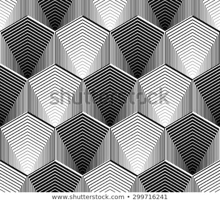 Vektör siyah beyaz zikzak diyagonal hatları Stok fotoğraf © CreatorsClub