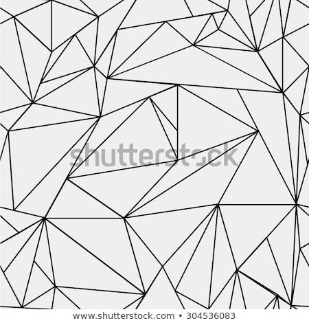 Vektor schwarz weiß Dreieck Netz geometrische Muster Stock foto © CreatorsClub