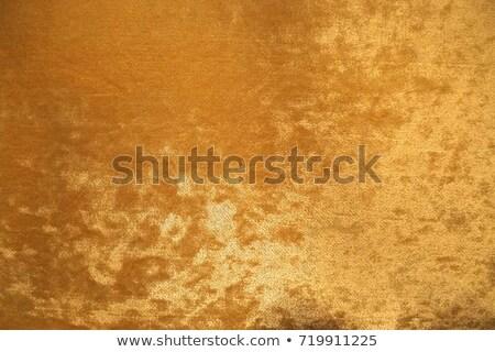 Luxus bársony szövet textúra magas döntés Stock fotó © andreasberheide