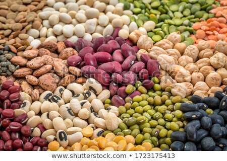 Lentil varieties Stock photo © Digifoodstock