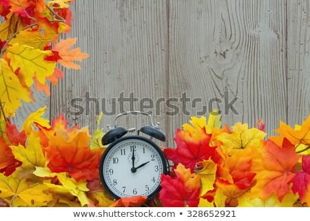 cadre · automne · frontière · coloré · bouleau - photo stock © capturelight