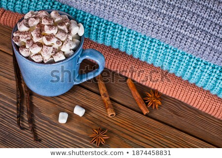 Cup hot chocolate with marshmallows in a ceramic cup, plaid and  Stock photo © Yatsenko