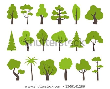Apple tree ícone vetor estilo gráfico cinza Foto stock © ahasoft