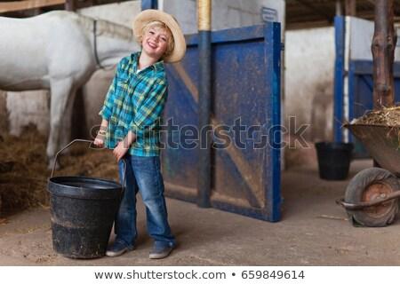 Fiú vödör istálló gyermek ló takarítás Stock fotó © IS2