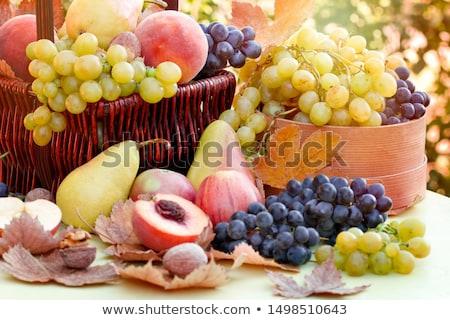 Stok fotoğraf: Sonbahar · meyve · grup · üzüm · elma · armut