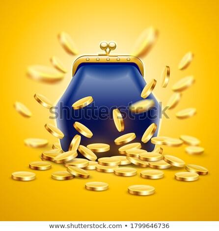 Klasszikus klasszikus luxus pénztárca arany érmék pénz Stock fotó © LoopAll