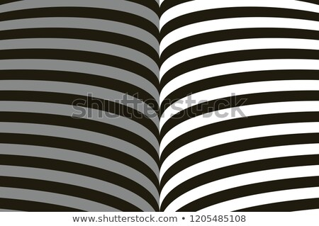 Abstract symmetrical black gray and white background. Lines symbolizing open book. Stock photo © ESSL