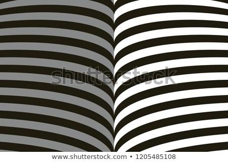 vettore · grafica · geometrica · illusione · ottica · forma · astratta · simbolo - foto d'archivio © essl