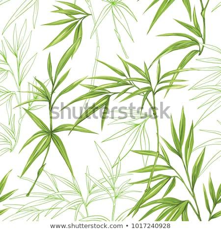 Bambus Muster zusammen perfekt Platz Stock foto © Soleil