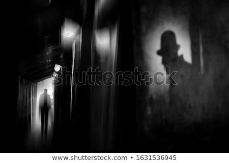 silhouette · illustration · détective · loupe · verre · ensemble - photo stock © rogistok