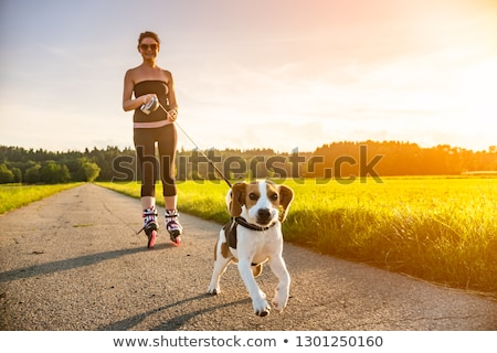 Woman on skate walking with dogs Stock photo © jossdiim