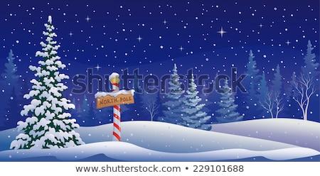 Koud noordpool illustratie sneeuw achtergrond kunst Stockfoto © colematt