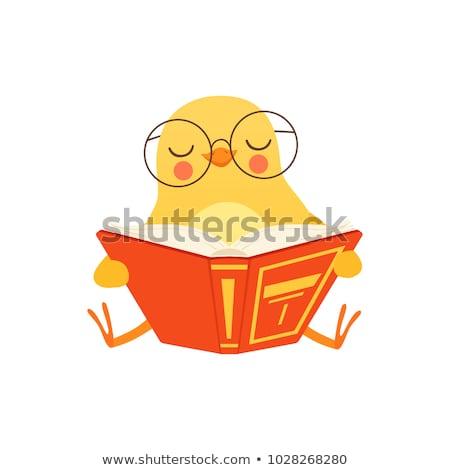 небольшой куриного книга мало желтый куриные Сток-фото © liolle