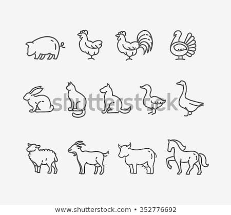 Farm animals - line design style icons set Stock photo © Decorwithme
