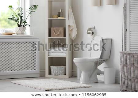 branco · banheiro · tigela · banheiro · limpar · higiênico - foto stock © AndreyPopov