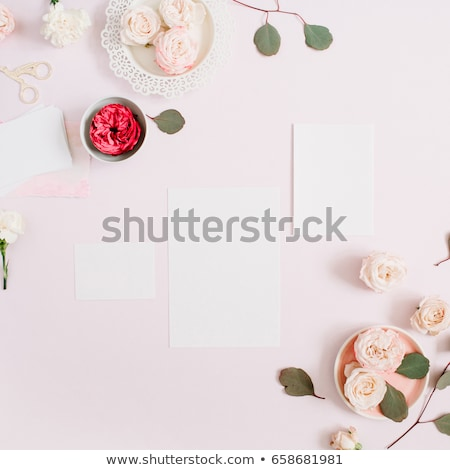 carnation flowers in an envelope on a pastel pink background stock photo © artjazz