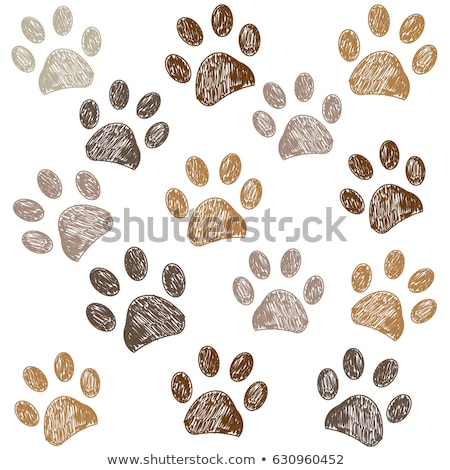 seamless pattern with doodle dog paws colorful animal print vector background stock photo © lemony