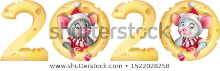 Nieuwjaar muis tweelingen muizen kostuum Stockfoto © orensila