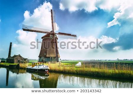 Escena molino de viento campo ilustración árbol forestales Foto stock © bluering