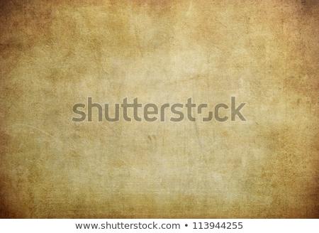 ヴィンテージ グランジ 古い 引き裂かれた紙 紙 抽象的な ストックフォト © Alkestida