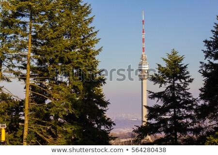 башни · сотовый · телефон · сеть · синий · промышленности - Сток-фото © simply