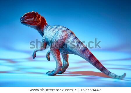 母親 赤ちゃん 恐竜 一緒に 顔 目 ストックフォト © michelloiselle