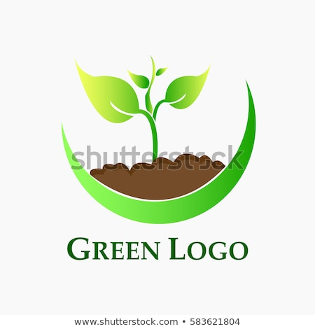 abstrato · eco · verde · planta · solo · papel - foto stock © pathakdesigner