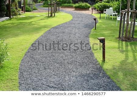 Chodzić sposób ogród wiosną charakter lata Zdjęcia stock © jakgree_inkliang