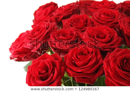 Large red rose flower arrangement stock photo greg