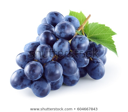 isolated grape juice Stock photo © M-studio