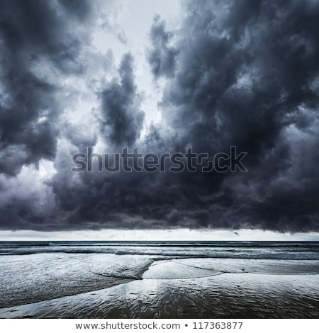océan · tempête · grand · vagues · plage · vague - photo stock © moses