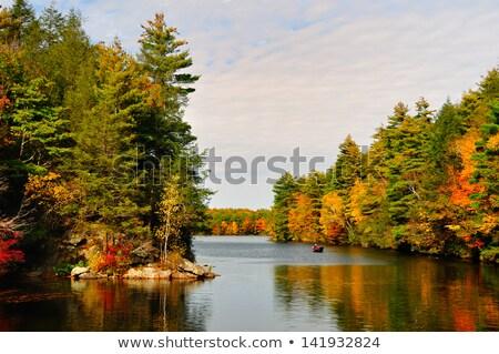 cair · oco · parque · céu · água · floresta - foto stock © jaymudaliar