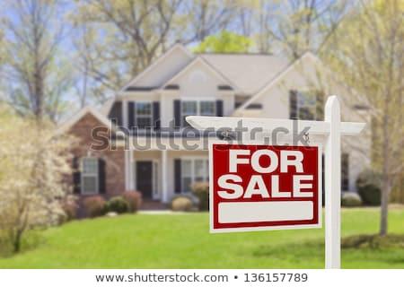 house / real estate sign Stock photo © djdarkflower