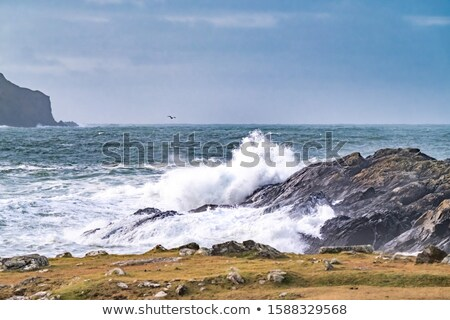 Blue wawy water with white foam in storme sea ocean surface stock photo © lunamarina