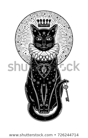 silhouette of witch and black cat stock photo © carbouval