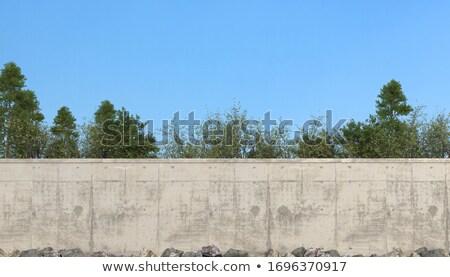 concrete fence stock photo © digoarpi