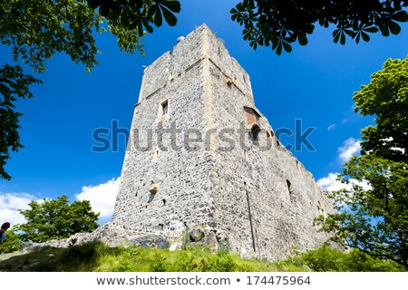 ruins of Radyne Castle, Czech Republic Stock photo © phbcz