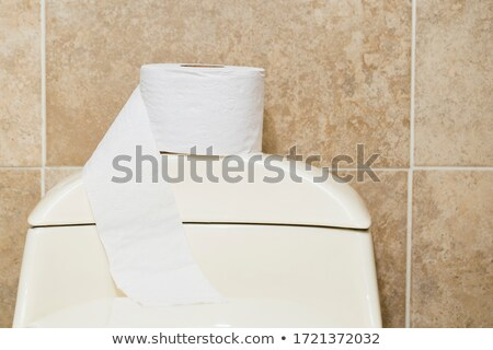 Toilet roll in beige toilet, lavatory convenience restroom full tiled wall  Stock photo © tarczas