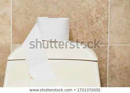 белый · плиточные · туалет · фотография · туалет · зеркало - Сток-фото © tarczas