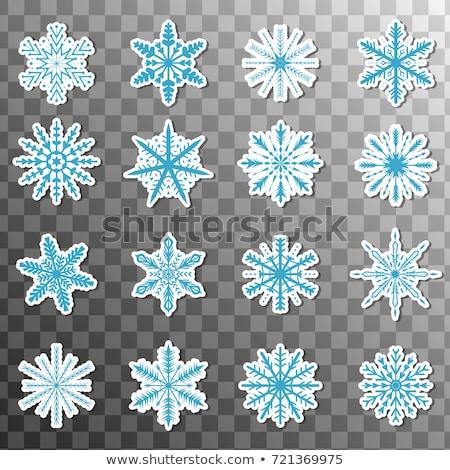 christmas · winter · sneeuwvlokken · vector · knoppen · ingesteld - stockfoto © redkoala